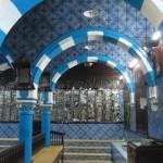 synag-elg